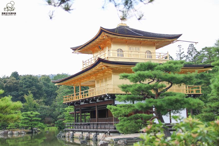 日本旅遊 金閣寺-2691.jpg