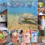 玩不膩的小琉球,在地特色隱藏版美食、熱情尹居民宿、數不清的海龜浮潛、澎派海味漁夫火鍋、獨特蜂巢蝦等超狂旅遊