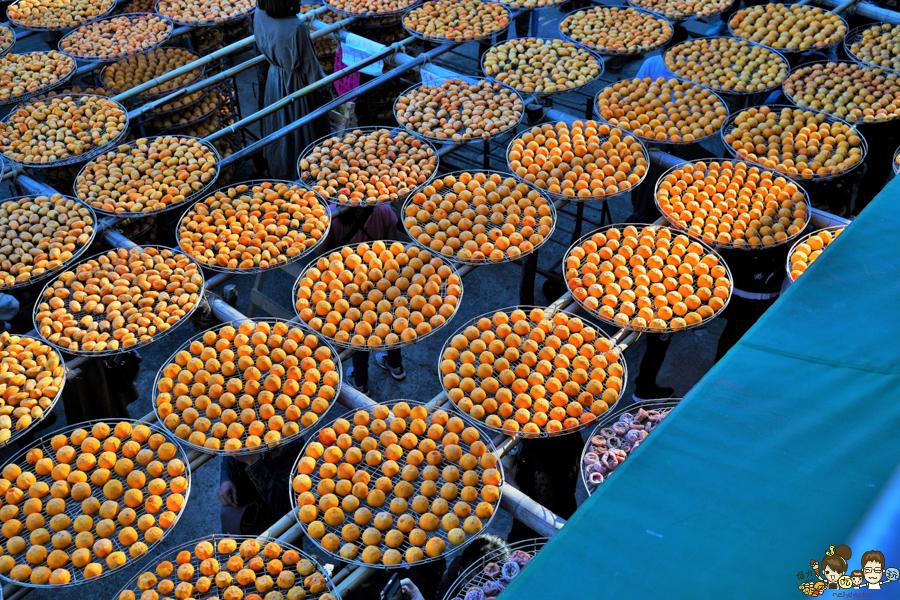 新竹景點 免費 晒柿子 柿餅 必遊 免費 好吃好玩 好拍