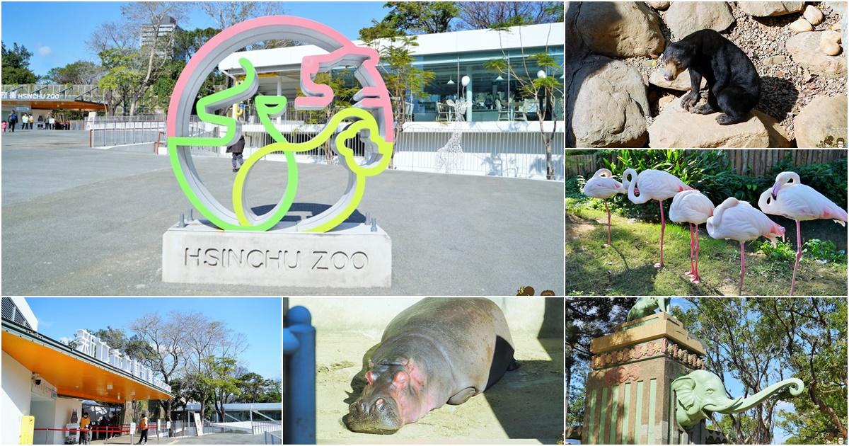 新竹景點 新竹動物園 親子旅遊 推薦旅遊 旅遊必訪
